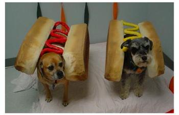 Hot_dogs_2_1