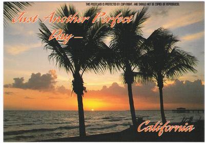La_t929_palm_trees_18