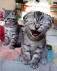 Laugh20often202