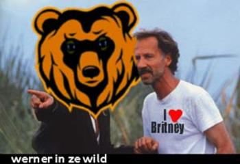 Wernerwild
